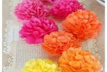 Paper Flowers & Photo Backgrounds
