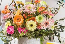 Sweet Pastels /  Colourful gerbera bouquets for decorations and inspiration