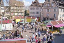 Le Printemps de Colmar (Alsace, France) / Colmar Frühling (Elsass, Frankreich) - Colmar spring (Alsace, France) -  www.printemps-colmar.com