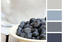 Color scheme blueberries