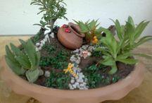 Mini garden / 60 ₺ den Başlayan fiyatlarla