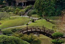 Japanese Garden / Japanse tuinen, inclusief mijn eigen Japanse tuin die ik in 2015 heb aangelegd.