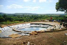 pond pools/ reg pools