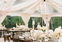 Wedding Centerpiece/Decor / Wedding centerpieces and draping decor