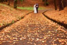 Fall-ing In Love