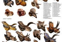 000.공룡