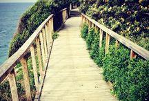 Sydney scenic walk and getaways