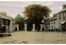 Hamill Family Genealogy Castleblaney, co. Monaghan / Castleblaney, co. Monaghan