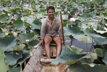 AMK (Angkor Mikroheranhvatho (Kampuchea) Co. Ltd) / AMK (Angkor Mikroheranhvatho (Kampuchea) Co. Ltd) est une IMF cambodgienne autorisée depuis 2010 à collecter également de l'épargne. L'institution fournit principalement des prêts via la méthodologie du « village banking » ciblant en priorité les femmes pauvres en zone rurale, ainsi que les activités agricoles. ©Philippe LISSAC