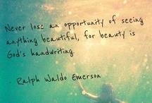 beauty / lifes beauty