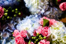 Blue and pink / by Laurel Weddings