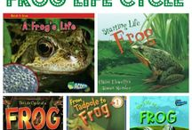 Science: Life Cycle Frog