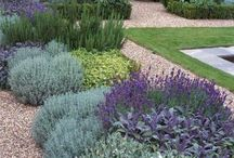 low mantenance garden