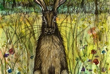 The Lords Hare / Some of my favourite animals are...
