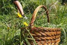Slocally Slovenia go local / Experience Creative side of Slovenia. Go local. Eat like a local. Discover Slovenia through local experiences with a savvy local. Rent-a-local guide. Get free local tips. More information: http://www.slocally.com/rent-a-local/