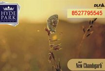 DLF Hyde Park Estate Plots / Hyde park Estate is the mega township project of DLF Builder at New Chandigarh. Hyde Park Estate Chandigarh is offering plots and is loaded with amenities and facilities.
