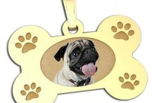 Furry Friends / We love our pets! Jewelry for all the pet lovers out there.  / by PicturesOnGold.com