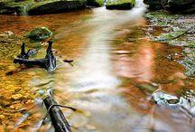 Rivers,Lakes,Ocean... / by Dawn Sisko