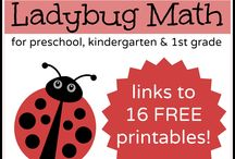 Ladybug / montessori inspired activities