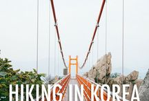 Korea Travel + Life