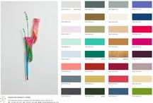 Colours 2014/15