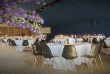 huwelijksfeesten - weddings