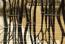 Landscapes - Swamps