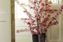Almendros y otras flores