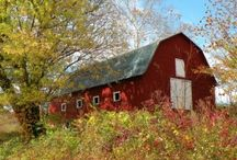 Barns / by Annette Franklin