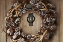 Pinecone obsession  / Everything pinecone related.  / by Samantha Owens