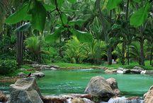 Acapulco belleza tropical