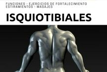 Isquiotibiales