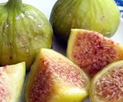 Fig Obsession! / by Theresa Jones
