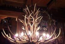 Deer horn