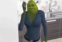 sHrEk mEmEs / someBODY ONCE TOLD ME THE WORLD WAS GONNA ROLL ME I AINT THE SHARPEST TOOL IN THE SHHEEEEDDDDD