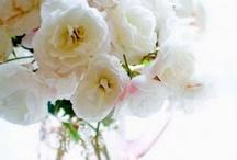 My Flower Shoppe
