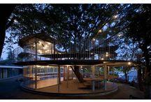 Tree playground