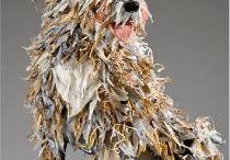 pies z gazet