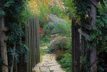 Gardening - structures and pathways