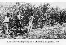 Pacific labour in Australia