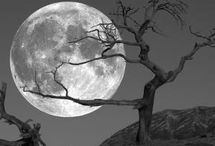 Moon,stars, night sky