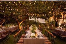 Wedding / by Samantha Swanner