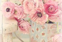 pink flower ok