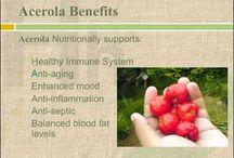 Acerola / Acerola health benefits