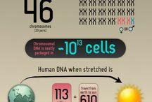 Genomic Wellness / by Cat Farrah - Eat Drink Grow Local