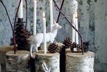 Winter Decorating / by Vera Shields