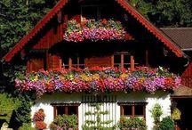 House Beatiful