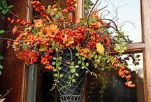 autumn arrangements / by cindy sachdeva
