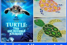 Sea Turtle Class Project