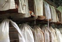 Birdcage Home Decor